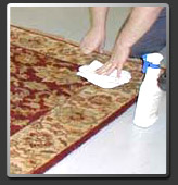 stain removal guide by Carpet cleaning Derby S.P